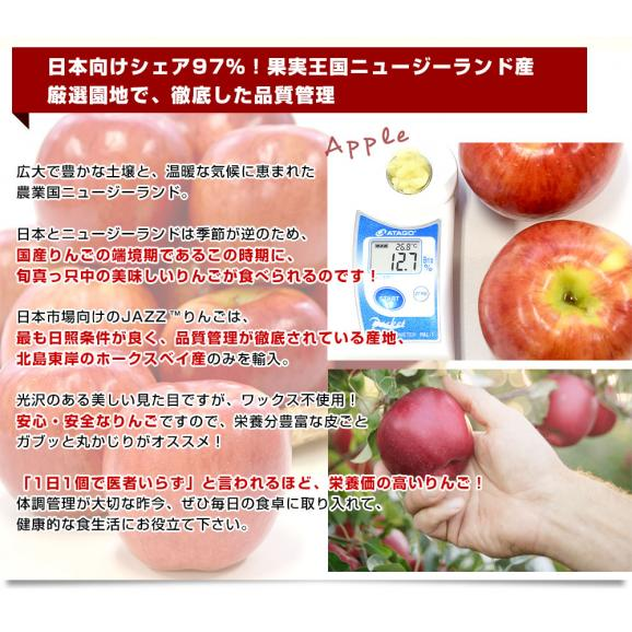 ニュージーランド産 JAZZりんご(品種:サイフレッシュ)約2キロ(11から15玉入)リンゴ 林檎 送料無料 市場発送06