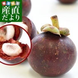 タイ産 マンゴスチン700g1箱(1玉90gUP×8玉)送料無料 クール便 果実の女王 世界三大美果物 トロピカルフルーツ まんごすちん