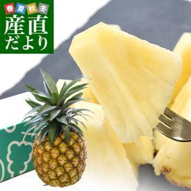 台湾産 ミルクパイン 大玉1玉(約2キロ)送料無料 クール便 パイン パイナップル パインアップル 台湾パイン