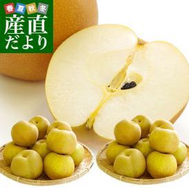 栃木産 豊水梨 大玉10キロ ご家庭用 良品(20玉から28玉)送料無料 なし ナシ 和梨