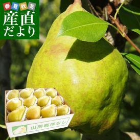 山形県より産地直送 洋梨マルゲリットマリーラ ご家庭用5キロ(8玉から18玉) 洋梨 洋なし 洋ナシ