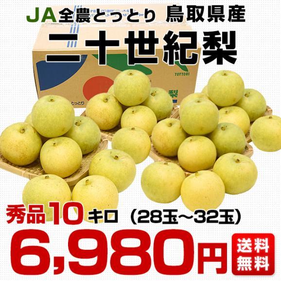 鳥取県産 JA全農とっとり 二十世紀梨 秀品10キロ(28玉から32玉)なし ナシ 20世紀 送料無料 市場発送03