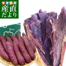 インパクト抜群の鮮やかさ!紫さつまいも界の王様!