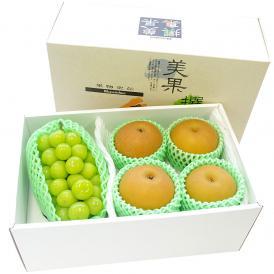 送料無料 シャインマスカットと季節のフルーツ(秀品梨)セット 化粧箱入り 高級フルーツギフト ぶどう 梨
