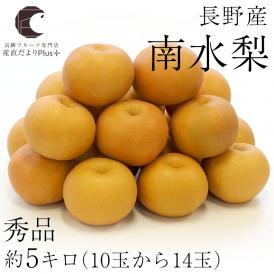 送料無料 長野県産 南水梨 秀品 約5キロ(10玉から14玉) 梨 なし 和梨