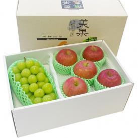 送料無料 シャインマスカットと季節のフルーツ(秀品りんご)セット 化粧箱入り 高級フルーツギフト ぶどう りんご