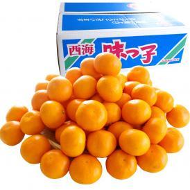 送料無料 長崎県産 JAながさき西海 西海みかん 味っ子 Sサイズ5キロ (秀品) みかん、早生みかん