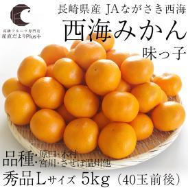 送料無料 長崎県産 JAながさき西海 西海みかん 味っ子 Lサイズ5キロ (秀品) みかん、早生みかん
