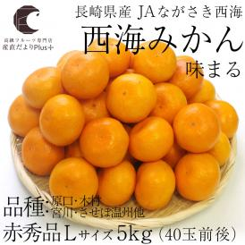 送料無料 長崎県産 JAながさき西海 西海みかん 味まる Lサイズ5キロ (赤秀品) みかん、早生みかん