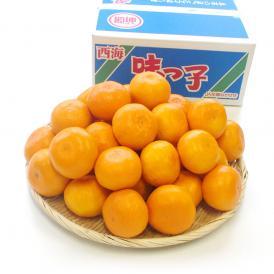 送料無料 長崎県産 JAながさき西海 西海みかん 味っ子 Mサイズ3キロ (秀品) みかん、早生みかん