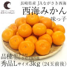 送料無料 長崎県産 JAながさき西海 西海みかん 味っ子 Lサイズ3キロ (秀品) みかん、早生みかん