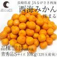 送料無料 長崎県産 JAながさき西海 西海みかん 味まる Sサイズ10キロ (青秀品) みかん、早生みかん