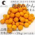 送料無料 長崎県産 JAながさき西海 西海みかん 味まる Mサイズ10キロ (青秀品) みかん、早生みかん