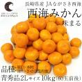 送料無料 長崎県産 JAながさき西海 西海みかん 味まる 2Lサイズ10キロ (青秀品) みかん、早生みかん