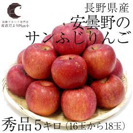 長野産 安曇野のサンふじりんご(秀品) 約5キロ(16玉から18玉)  林檎 サンふじ ふじ