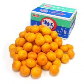 送料無料 長崎県産 JAながさき西海 西海みかん 味まる LからSサイズ 10キロ (優品) みかん、早生みかん