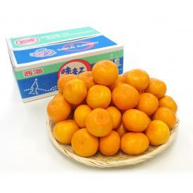 送料無料 長崎県産 JAながさき西海 西海みかん 味まる Mサイズ5キロ (青秀以上) みかん、早生みかん