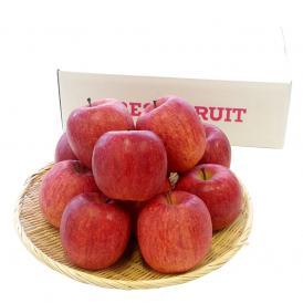 果実全体が真っ赤に染まった極上のサンふじりんご特秀品