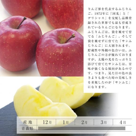 送料無料 青森県産 サンふじりんご 特秀品 Lサイズ 3キロ (10から12玉) ふじりんご ふじ 林檎05