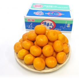 送料無料 長崎県産 JAながさき西海 西海みかん 味まる Lサイズ5キロ (秀品) みかん、今村種