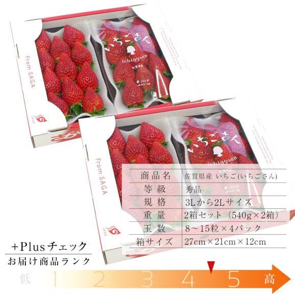 佐賀県産 新ブランド苺 いちごさん 秀品 3Lから2Lサイズ 2箱セット  (約540g×2箱) 送料無料 イチゴ03