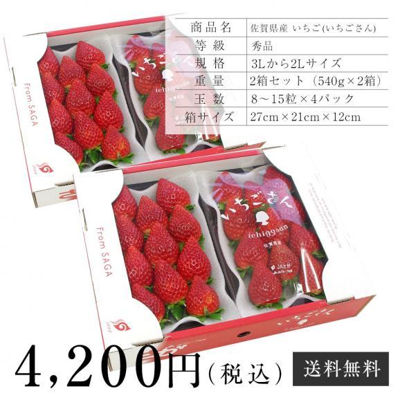 佐賀県産 新ブランド苺 いちごさん 秀品 3Lから2Lサイズ 2箱セット  (約540g×2箱) 送料無料 イチゴ06