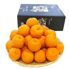 送料無料 愛媛県産 JAにしうわ みつる共選 蜜るポンカン 特秀 2LからLサイズ (40から30玉) かんきつ 柑橘 ぽんかん