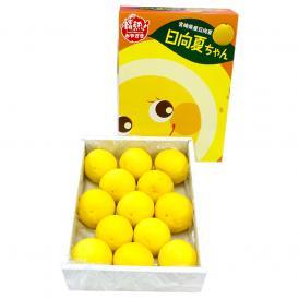 宮崎を代表する柑橘「日向夏」。とろっとした柔らかい食味で、さっぱりとした甘さ。