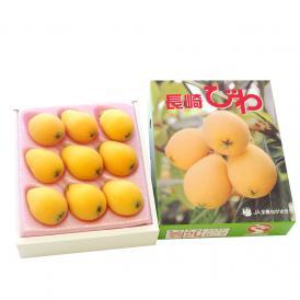 送料無料 長崎県産  ハウス長崎びわ 2Lサイズ 500g化粧箱 (9玉入り)  枇杷