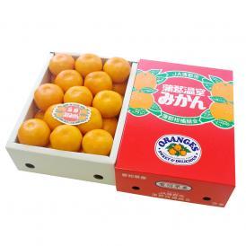 愛知県産 蒲郡温室みかん Mサイズ 2.5キロ化粧箱 (24玉入り) 蜜柑 ハウスみかん 送料無料