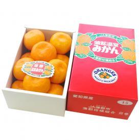 愛知県産 蒲郡温室みかん Mサイズ 1.2キロ化粧箱 (12玉入り) 送料無料 蜜柑 ハウスみかん