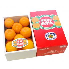 愛知県産 蒲郡温室みかん Sサイズ 1.2キロ化粧箱 (15玉入り) 送料無料 蜜柑 ハウスみかん