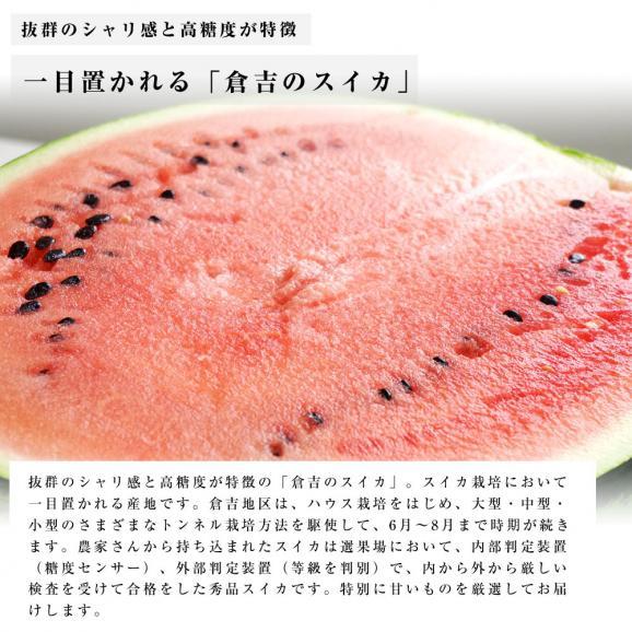 送料無料 鳥取県産 大玉スイカ 秀品 Lサイズ以上×2玉(約6キロ×2玉)合計12キロ以上  すいか 西瓜04