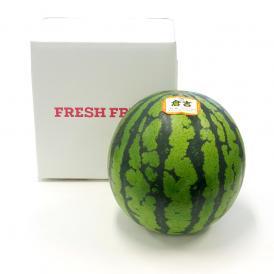 送料無料 鳥取県産 大玉スイカ 秀品 Lサイズ (約6キロ×1玉) すいか 西瓜