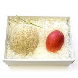 送料無料 北海道メロンと宮崎マンゴー 詰合せ 化粧箱入り フルーツセット  めろん まんごー 夏ギフト2019