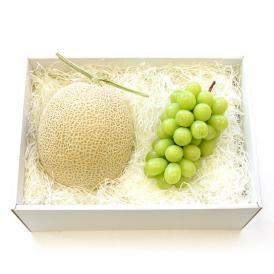 北海道メロンとシャインマスカット 詰合せフルーツセット 化粧箱入り めろん ぶどう 送料無料 お中元ギフト