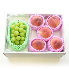 送料無料 シャインマスカットと特秀桃 詰合せ 化粧箱入り フルーツセット ぶどう もも 夏ギフト2019