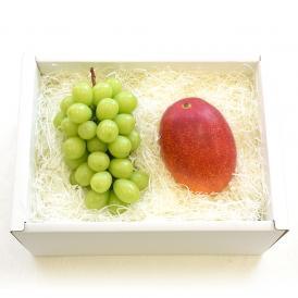 送料無料 シャインマスカットと宮崎マンゴー 詰合せ 化粧箱入り フルーツセット ぶどう まんごー 夏ギフト2019