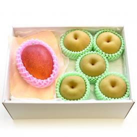 送料無料 宮崎マンゴーとハウス梨 詰合せ 化粧箱入り フルーツセット まんごー なし 夏ギフト2019