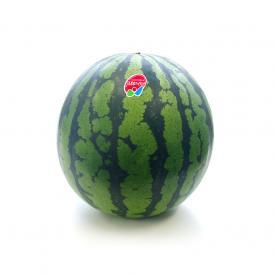 【予約商品】送料無料 長野県産 スイカ 秀品 Lサイズ以上 1玉 (6キロ以上) すいか 西瓜 大玉スイカ