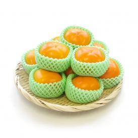 送料無料 奈良県産 たねなし柿 2Lサイズ 約2.5キロ (10玉)  柿 たねなし柿 刀根柿 平種無柿