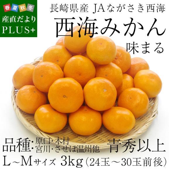 送料無料 長崎県産 JAながさき西海 西海みかん 味まる  青秀以上  LからMサイズ 3キロ (24玉から30玉) みかん、早生みかん02