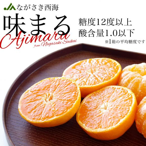 送料無料 長崎県産 JAながさき西海 西海みかん 味まる  青秀以上  LからMサイズ 3キロ (24玉から30玉) みかん、早生みかん03