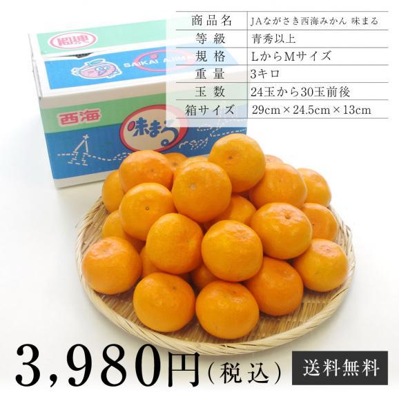 送料無料 長崎県産 JAながさき西海 西海みかん 味まる  青秀以上  LからMサイズ 3キロ (24玉から30玉) みかん、早生みかん06