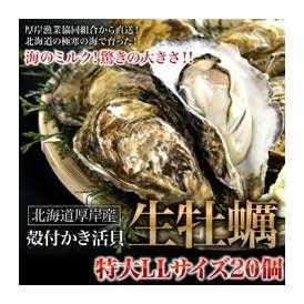 牡蠣・カキ・かき 北海道厚岸産の殻付き生牡蠣 特大LLサイズ 20個入 牡蠣ナイフ付き