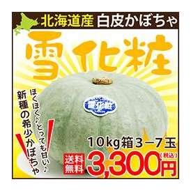 北海道産 白いカボチャ 雪化粧 10kg前後大箱