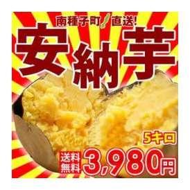 【送料無料】テレビやメディアで話題のさつまいも!溢れ出る甘蜜!スイーツ感覚なサツマイモ『南種子町産 安納芋』サイズ混合5.0kg箱