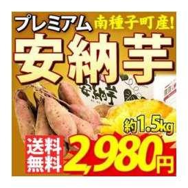 【送料無料】農家さん絶賛のさつまいも★さらにさらに1ヶ月間つるすことで甘さ増加!農家直伝のスイーツ感覚なサツマイモ『南種子町産 プレミアム安納芋』サイズ混合約1.5kg箱(10個前後)