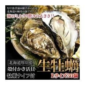 牡蠣・カキ・かき 北海道厚岸産の殻付き生牡蠣 Lサイズ(大)30個入 牡蠣ナイフ付き