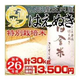 (無洗米)選択可!(送料無料)新米!26年度産 山形県庄内産特別栽培米 『はえぬき』 5kg×3袋